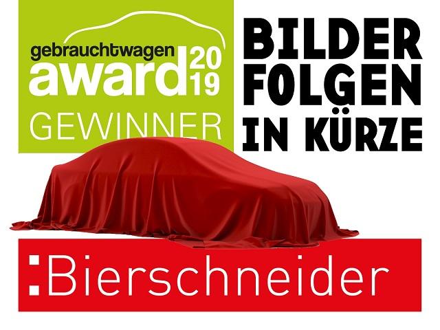 seat h ndler jahreswagen neuwagen auto bierschneider gmbh. Black Bedroom Furniture Sets. Home Design Ideas